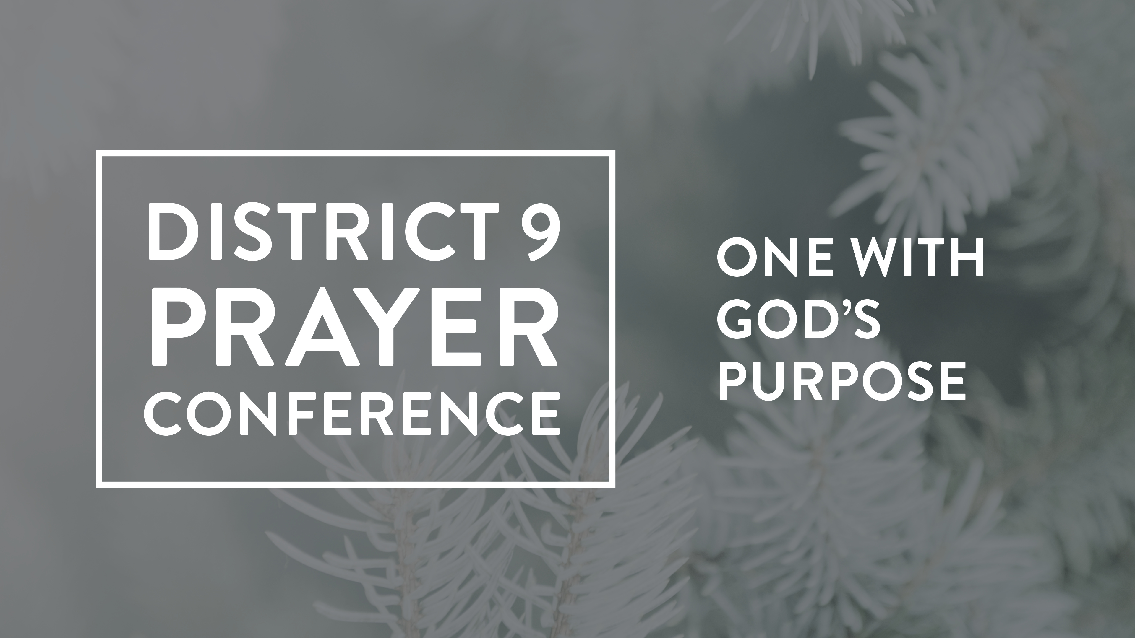 One With God's Purpose | Pioneer Memorial Church